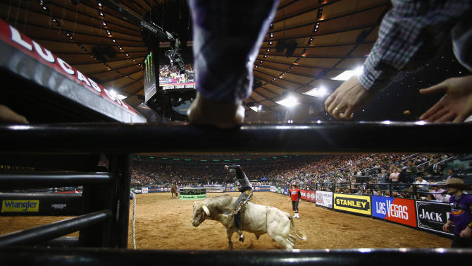 A competitor rides a bull during the Professional Bull Riders invitational at Madison Square Garden in New York