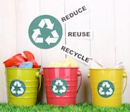 The article lists 10 ways to contribute to the environment in an economical way