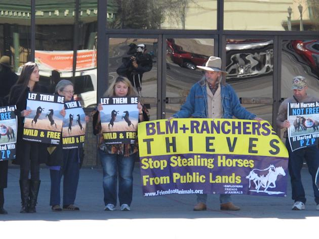 In a Feb. 26, 2015 photo, members of wild horse advocacy groups Friends of Animals and Protect Mustangs protested in Sparks, Nev., against plans to roundup hundreds of mustangs in Nevada and inject do