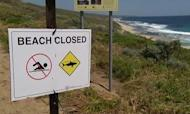 Shark Kills Surfer In Western Australia