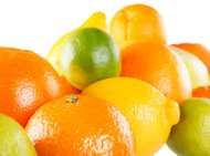 https://media.zenfs.com/en-US/blogs/partner/4674citrus_collection.jpg