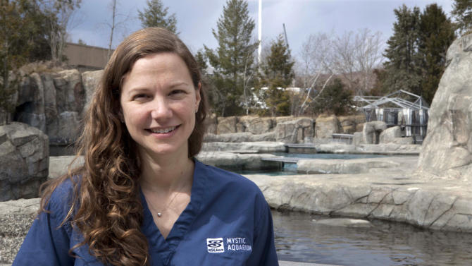 In this Wednesday, March 27, 2013 photo, Mystic Aquarium veterinarian Allison D. Tuttle poses at the aquarium in Mystic, Conn.  Tuttle helped perform the amputation of one of the two hind flippers an 8-month old female harbor seal, known as Pup 49, and is supervising the mammal's recovery.  (AP Photo/Rodrique Ngowi)
