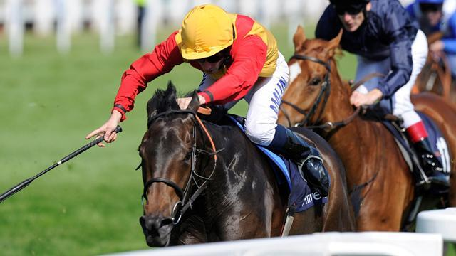 Horse Racing - Snow Fairy retired due to nagging injury