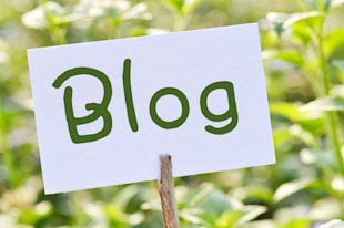 30 Tips to Freshen up & Rock Your Blog in 2014 image photodune 4613884 blog xs