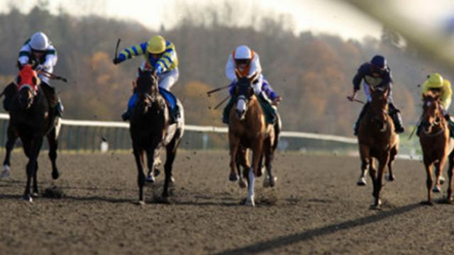 Horse Racing - Farraaj has spring in his step in quest for second Winter Derby