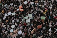 Students protest in Sao Paulo, Brazil on June 17, 2013, against a rise in public bus and subway fares. Brazil's Congress has received a request from President Dilma Rousseff to hold a referendum on political reform in response to the worst social unrest in 20 years