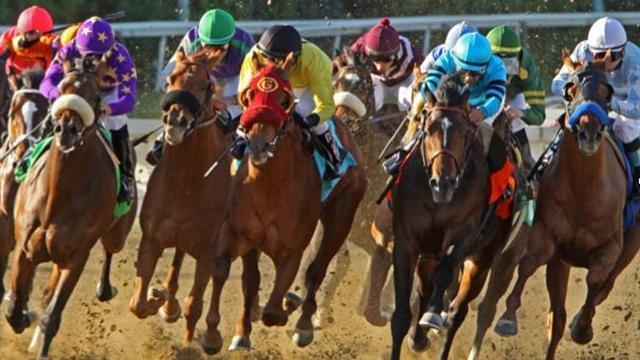 Horse Racing - Sanshaawes can land race of nations for South Africa