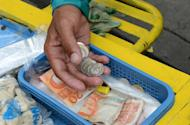 A street vendor holds and counts Philippine peso currency in Manila on September 13, 2012. The Philippines should weather the unwinding of the US Federal Reserve's stimulus programme, a central bank official said Friday, as market jitters saw the peso plunge to a 19-month low