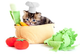 Cats need some nutrients found only in meat.