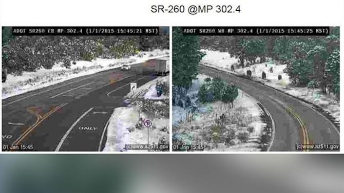 'Mysterious Beasts' Spotted by Arizona Highway Cameras