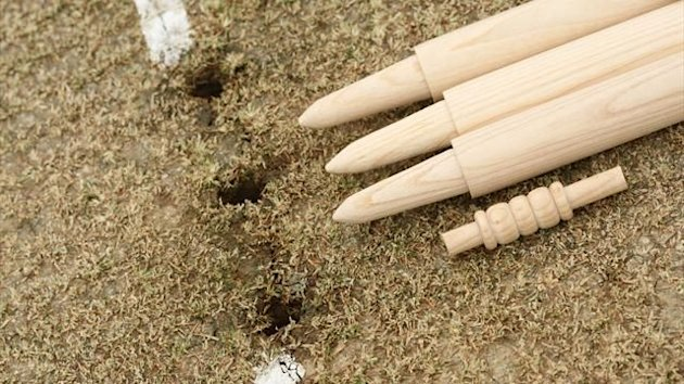 Cricket stumps generic