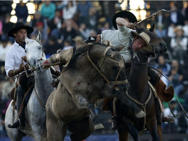 Gauchos ride wild horses during the annual celebration of Criolla Week in Montevideo