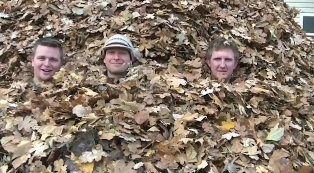 Biggest pile of leaves