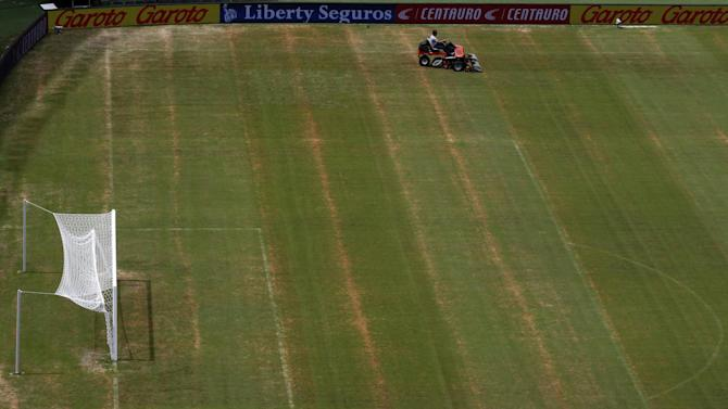 World Cup - Paper Round: England pitch sprayed to make it look better
