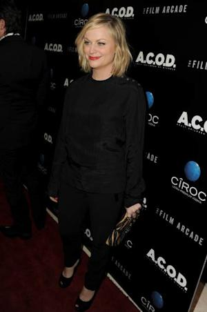 Amy Poehler attends the premiere of the Film Arcade's 'A.C.O.D.' at the Landmark Theater on September 26, 2013 in Los Angeles -- Getty Images
