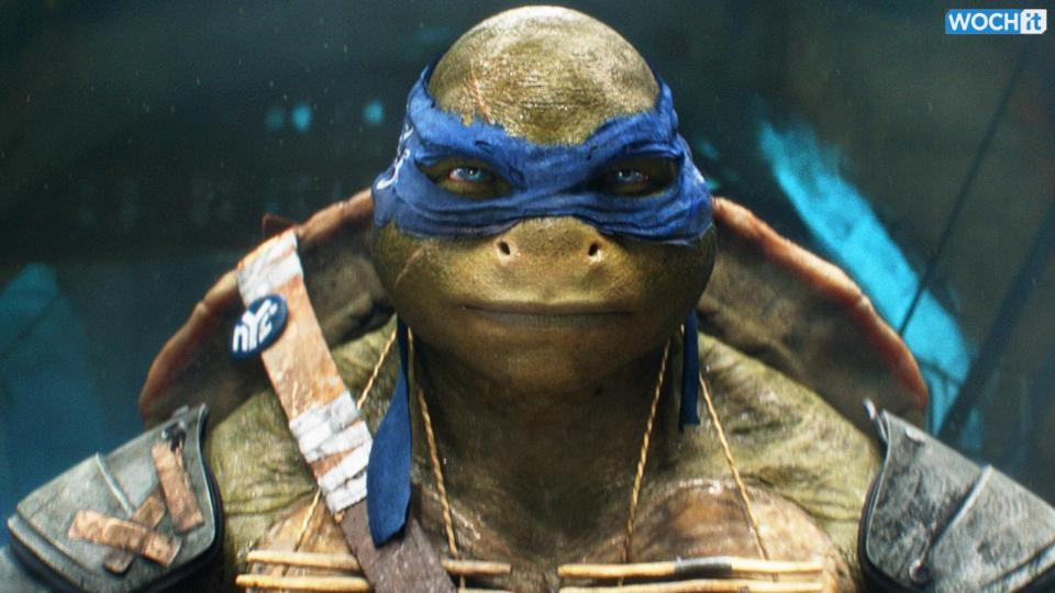 A Digital And Divisive Redesign Of 'Ninja Turtles'