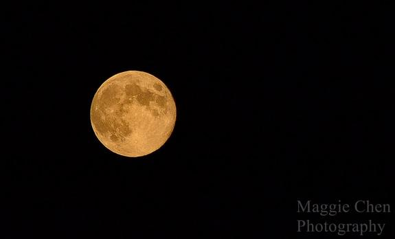 Blue Moon Wows Observers Around the World (Photos)