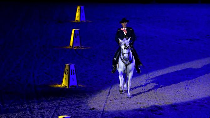A rider of The Royal Andalusian School of Equestrian Art performs during the opening show of the Sicab International Pre Horse Fair in the Andalusian capital of Seville, southern Spain