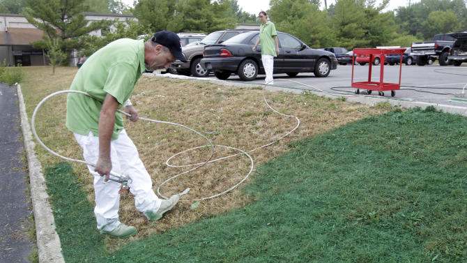 Turf painting spreads as drought ravages lawns