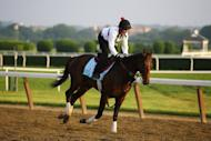 Jennifer Patterson rides Kentucky Derby winner Orb during a training session at Belmont Park in Elmont, New York, on June 6, 2013. With Orb and Preakness champ Oxbow poised for a Belmont Stakes showdown on Saturday, Freedom Child is drawing attention as a potential spoiler in the last of 2013's Triple Crown races