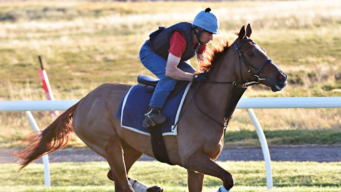 Werribee Trackwork Session