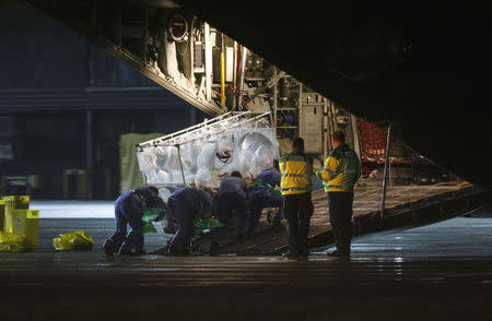 An Ebola patient is put on a Hercules transport plane at Glasgow Airport in Scotland December 30, 2014, to be transported to London. REUTERS/Stringer/Files