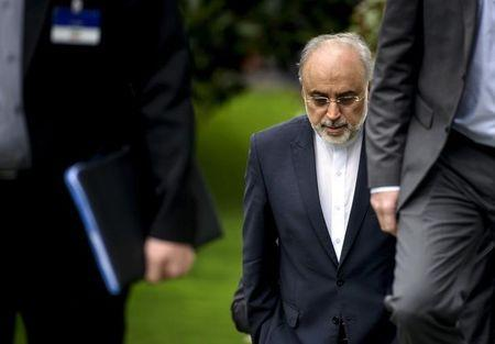 The Head of the Iranian Atomic Energy Organization Ali Akbar Salehi walks through a garden at the Beau Rivage Palace Hotel during an extended round of talks in Lausanne, April 2, 2015. REUTERS/Brendan Smialowski/Pool