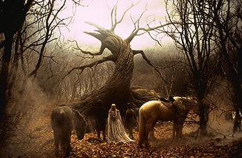 The Tree Of The Dead in Sleepy Hollow