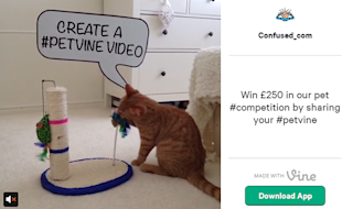 5 Ways Marketers Can Use Twitter's Vine App to Drive Social Media ROI image