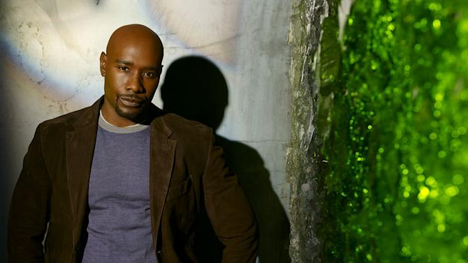 "Morris Chestnut stars as Ryan Nichols in ""V."""
