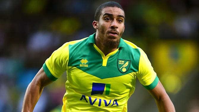 Championship - Norwich go top, Fulham claim overdue win