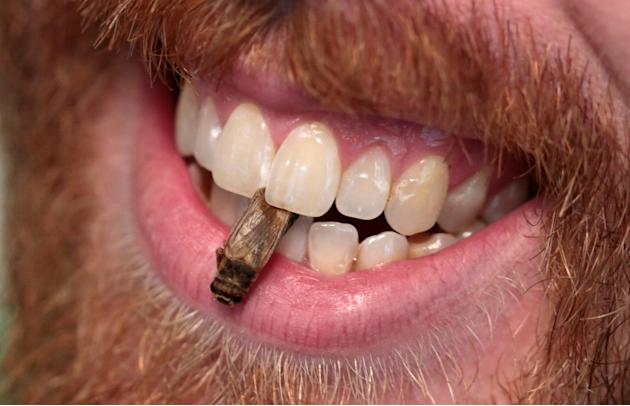 Robert Allen holds a edible freeze-dried cricket between his teeth during a 'Eating Insects Detroit: Exploring the Culture of Insects as Food and Feed' conference at Wayne State University in