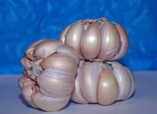 How to Use Garlic in Treating Hypertension