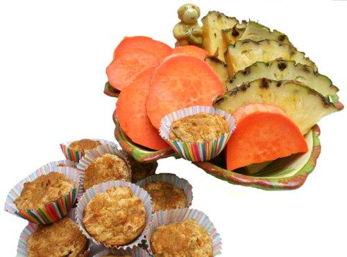 All Natural Dog Treats Gourmet Sweet Potato Pineapple Delights