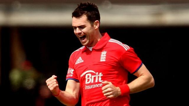 Cricket - Anderson proud of wicket landmark