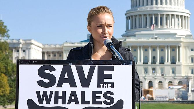 Panettiere Hayden Whale Protest