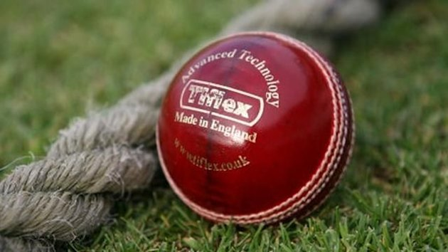 Cricket ball generic image