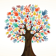 Customer Feedback is the Oxygen of Social Enterprise image Oxygen tree 300x300