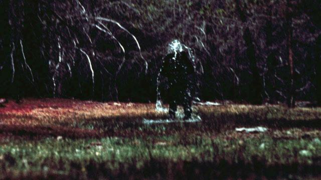 Bigfoot's 'Screech' Caught on Tape?