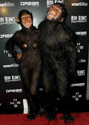 Heidi Klum Sports Prosthetic Breasts in Monkey Costume for Halloween
