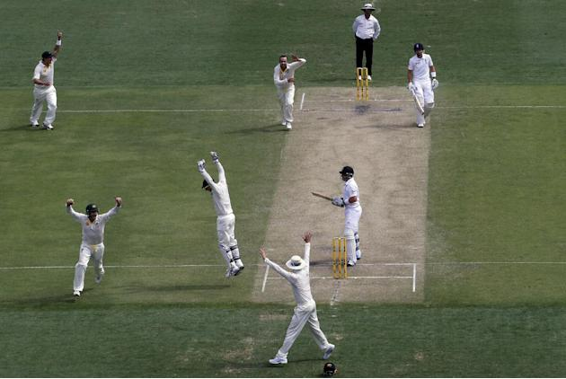 Australia's team members celebrate after taking the wicket of England's Bell during the second day's play of the first Ashes cricket test match in Brisbane