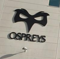 The Ospreys have reorganised their management structure
