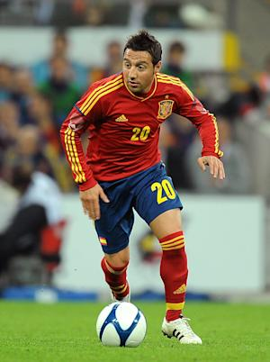 Arsenal target Santi Cazorla has won the last two European Championships with Spain