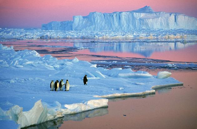 10 incredible airbnb places to stay for long weekend for Antarctica places to stay