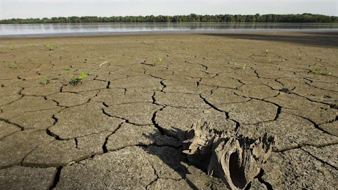 In this Aug. 22, 2012, drought condition water levels have taken their toll on the wildlife at Anderson Lake State Fish & wildlife Area near Astoria, Ill. According to the latest drought report released Thursday, Aug. 23, 2012, nearly all of Illinois, Nebraska, Kansas and Missouri are in extreme or exceptional drought, with Illinois showing the most-dramatic climb in those categories, spiking 17 percentage points in one week, to 96.72 percent, according to the map.  (AP Photo/Seth Perlman)