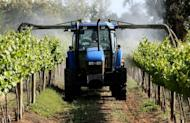 File photo of a vineyard in New South Wales, Australia. Opposition leader Tony Abbott has said while he welcomed foreign investment, Australia needed to improve oversight when it came to farming land and agribusiness, as the party released a policy paper on the subject