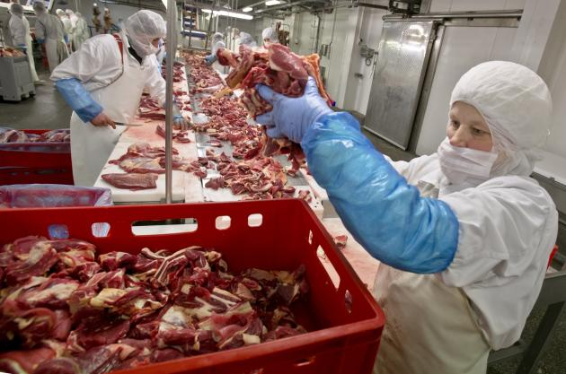 A worker handles meat at the Doly-Com abattoir, in Roma, Romania, which has been defended by the country's officials in the wake of the horse meat scandal (PA).