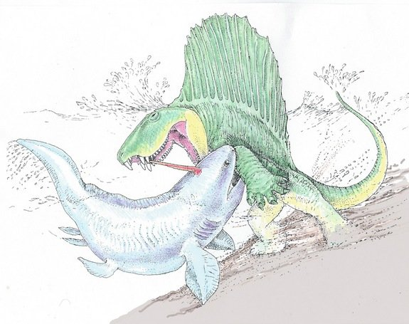 An illustration of a battle between Dimetrodon and Xenacanthus.
