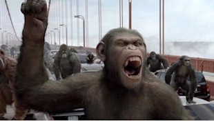 Apes take on humans (Yahoo! Photo)