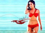 Sonal Chauhan on 3G: Horror with technology is the core
